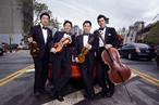 string-family-quartet