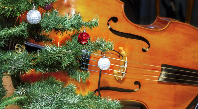 bass by the christmas tree ready for songs for the holidays
