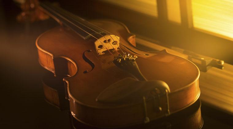 image of viola in warm lighting