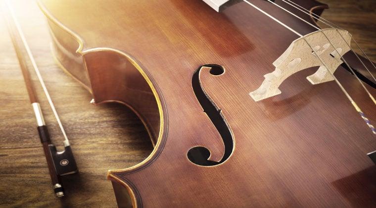 violin string instrument ready for the winter season