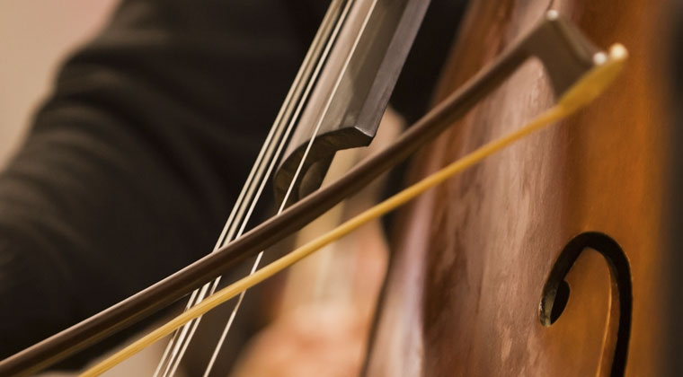 playing double bass and its do's and don'ts