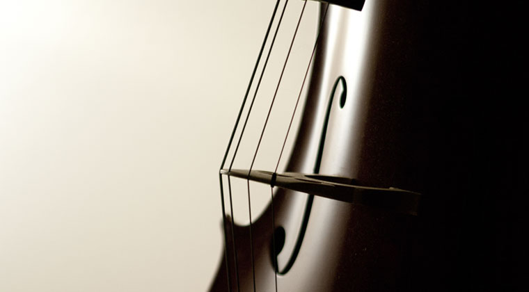 close up of alphayue cello strings