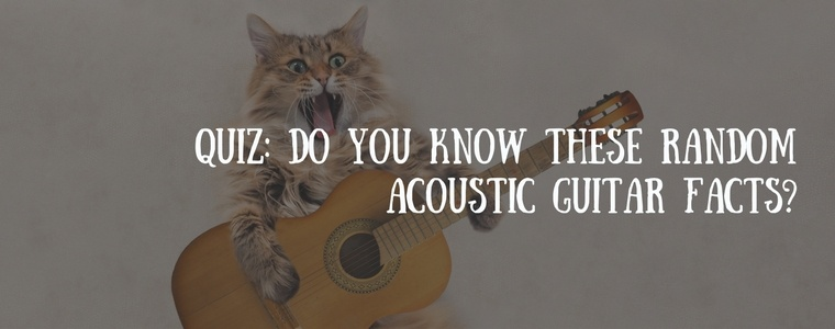 Quiz- Do you know these random guitar facts (2).jpg