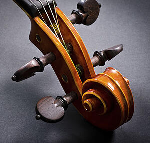 The-Musicians-Ultimate-Guide-To-Violin-Strings-Blog5