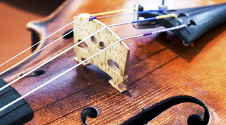 Tips For Choosing The Right Viola http://www.connollymusic.com/stringovation/choosing-the-right-viola-tips @revellestrings