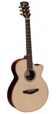 Venus Auditorium Faith Guitar