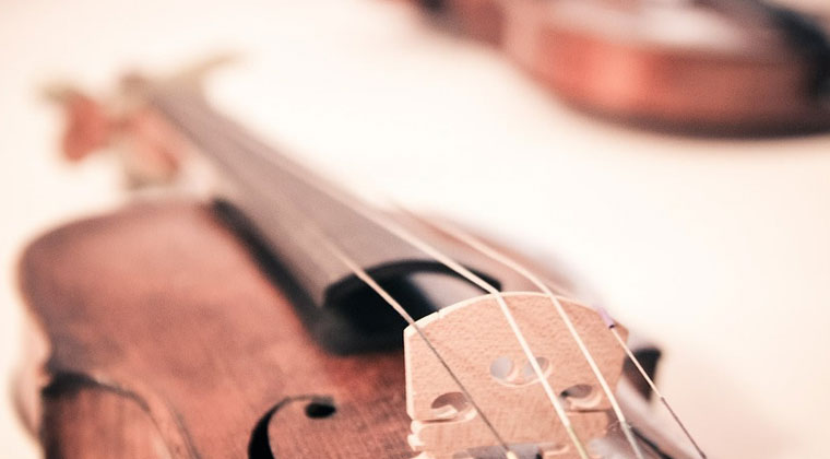 What is the difference between violins  http://www.connollymusic.com/revelle/blog/what-is-the-difference-between-violins @revellestrings
