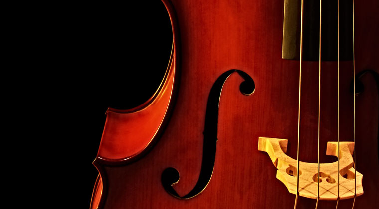 Close up of cello strings and what to look for when choosing