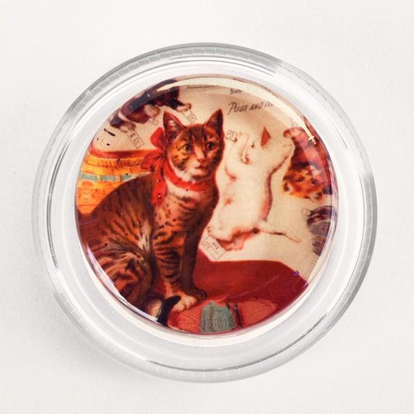 Vintage-Cats-magic-rosin