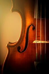 thomastick_Dominante_violin_strings_2