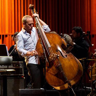 Artist Profile: Israeli Jazz Bassist Avishai Cohen