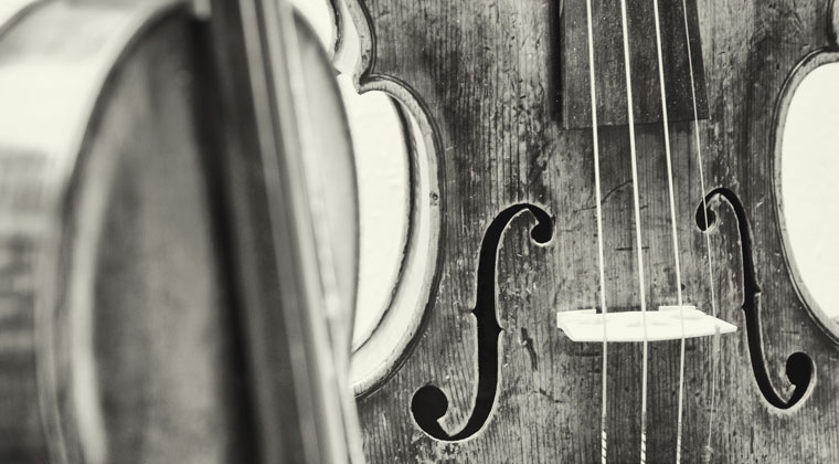 A Brief History of the Viola