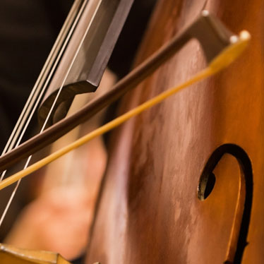 Double Bass Practice Do's And Don'ts