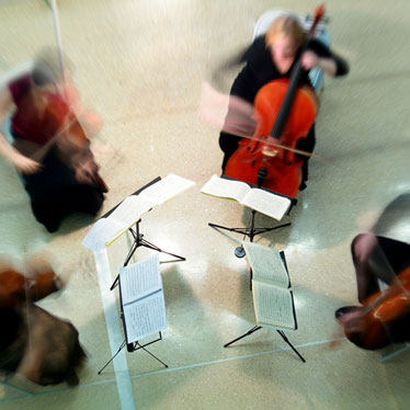 How To Form A String Quartet This Summer