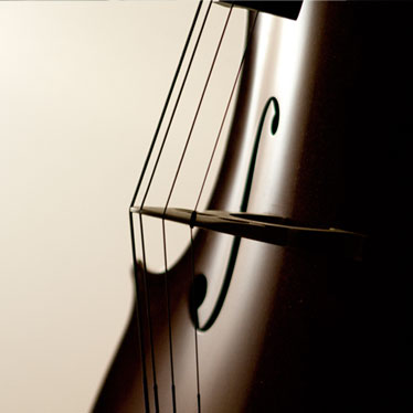 Product Spotlight: Alphayue Cello Strings