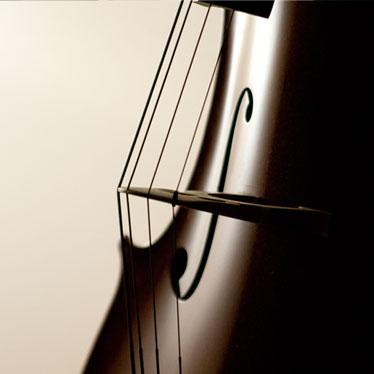 Product Spotlight: Alphayue Cello Strings