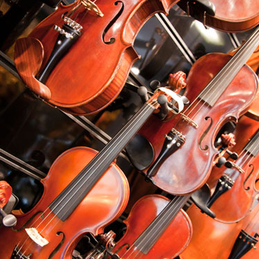 Torn Between Two Strings: Violin or Viola?