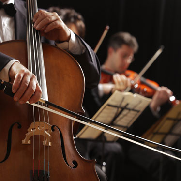 Understanding The Different Roles String Instruments Play In An Orchestra