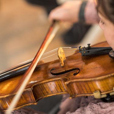 Violin String Round-Up: Advanced vs. Intermediate vs. Beginner Strings