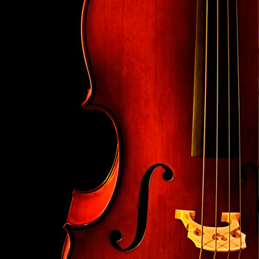 What To Look For When Choosing Cello Strings