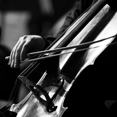 What To Look For In A Cello Bow