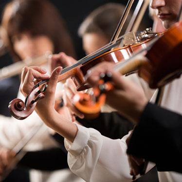 What Instruments Are In The Orchestral String Family?