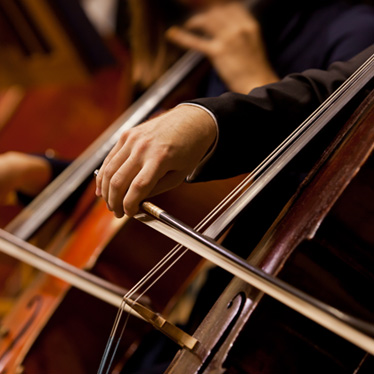 What Careers are Perfect for Cellists?