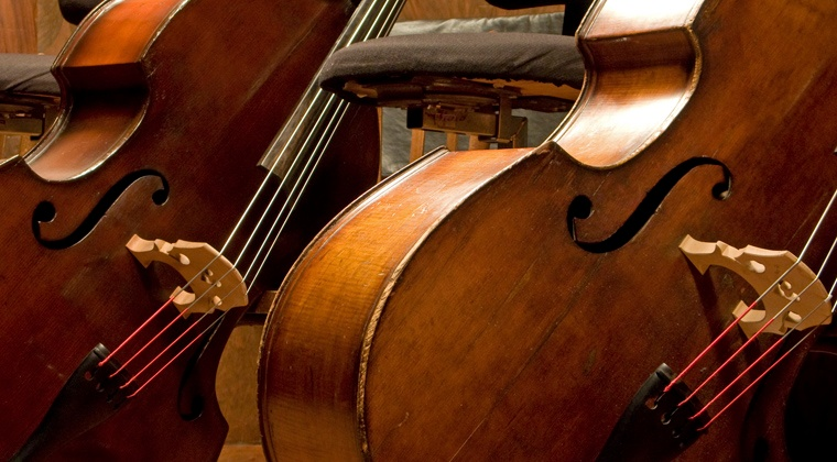 A Brief History of the Bass