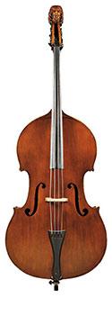 Image of Bass