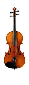 Image of Viola