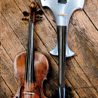 How Many Different Types of Violins Are There?