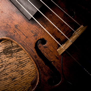 What Are Violins Made Of?